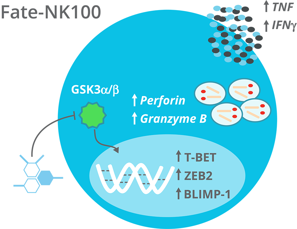 NK-100