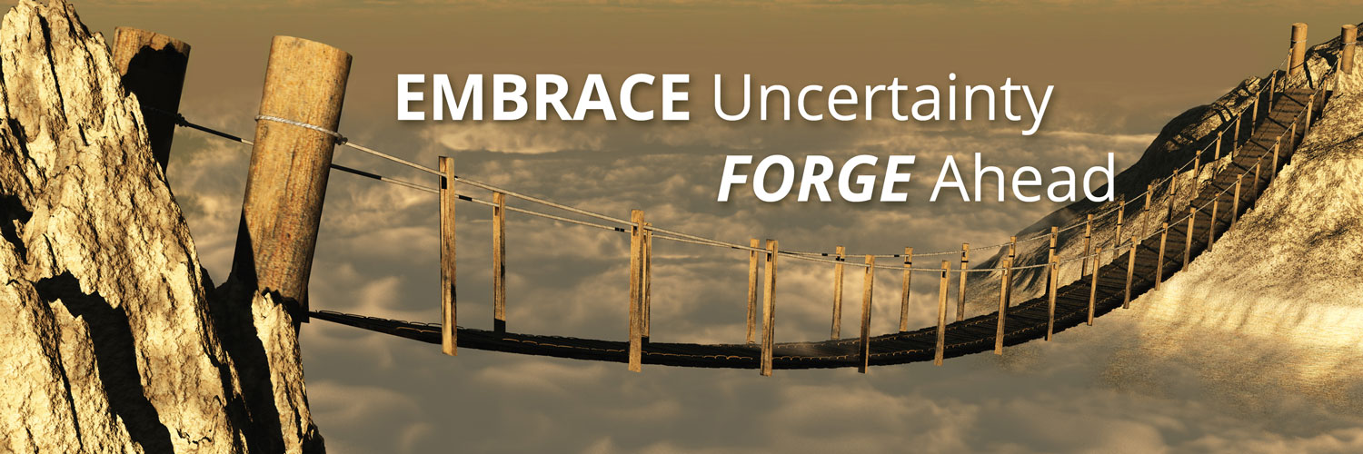 EMBRACE UNCERTAINTY, FORGE AHEAD