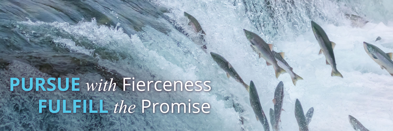 PURSUE WITH FIERCENESS, FULFILL THE PROMISE